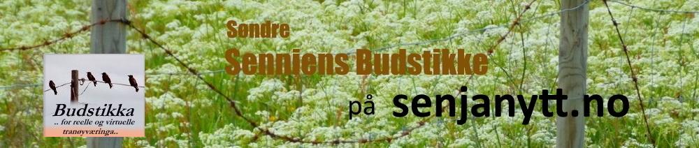 Søndre Senniens Budstikke